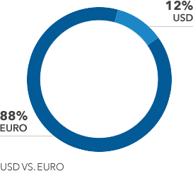 Group total indebtness Us$ vs. Euro